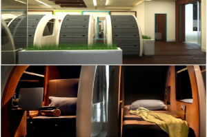 Sleep 'n fly pods